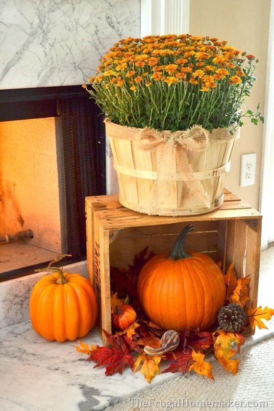 entrada halloween