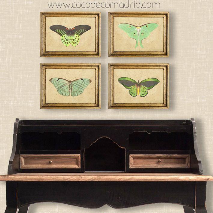 conjunto de mariposas green.