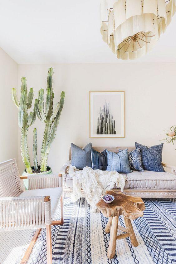 cactus para decorar una casa
