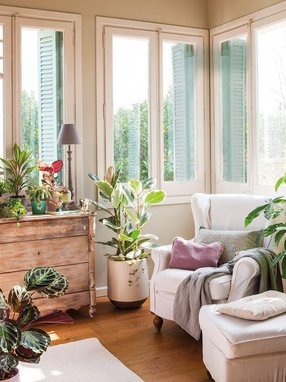rincón decorado con plantas